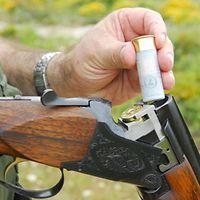 Техника безопасности при обращении с оружием