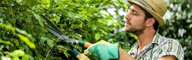 Техника безопасности при садовых работах