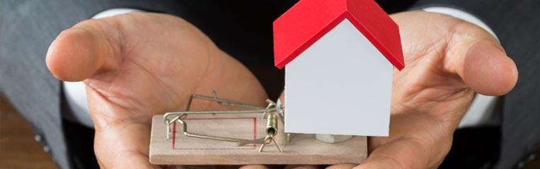К вопросу о безопасности: аферы с жильем