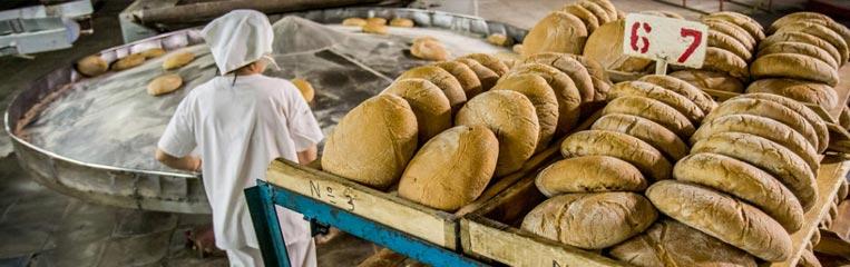 Безопасность труда на хлебобулочном производстве