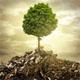 Экология производства